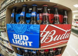 Bud Light and Budweiser are among the brands owned by AB InBev